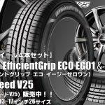 【新発売】グッドイヤーEfficientGrip ECO EG01 &EuroSpeed V25|タイヤホイール4本セット